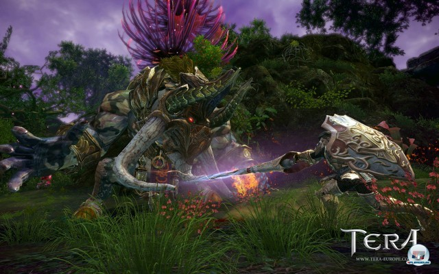 Screenshot - TERA (PC) 2241143