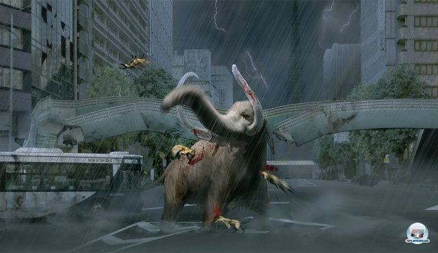 Screenshot - Tokyo Jungle (PlayStation3) 2384452