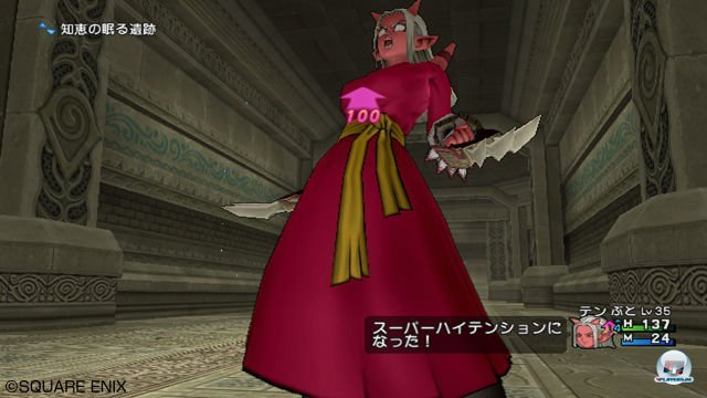 Screenshot - Dragon Quest X Online (Wii) 2292967