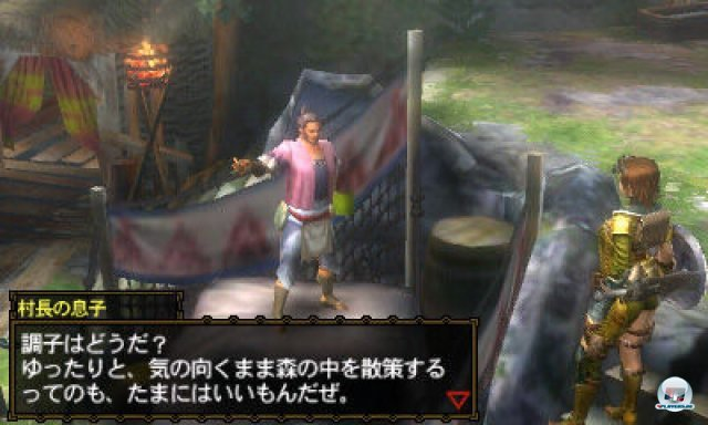 Screenshot - Monster Hunter 3G (3DS) 2273957