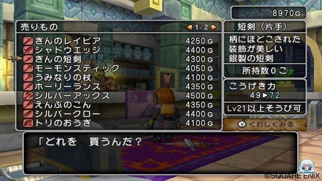 Screenshot - Dragon Quest X Online (Wii) 2273422