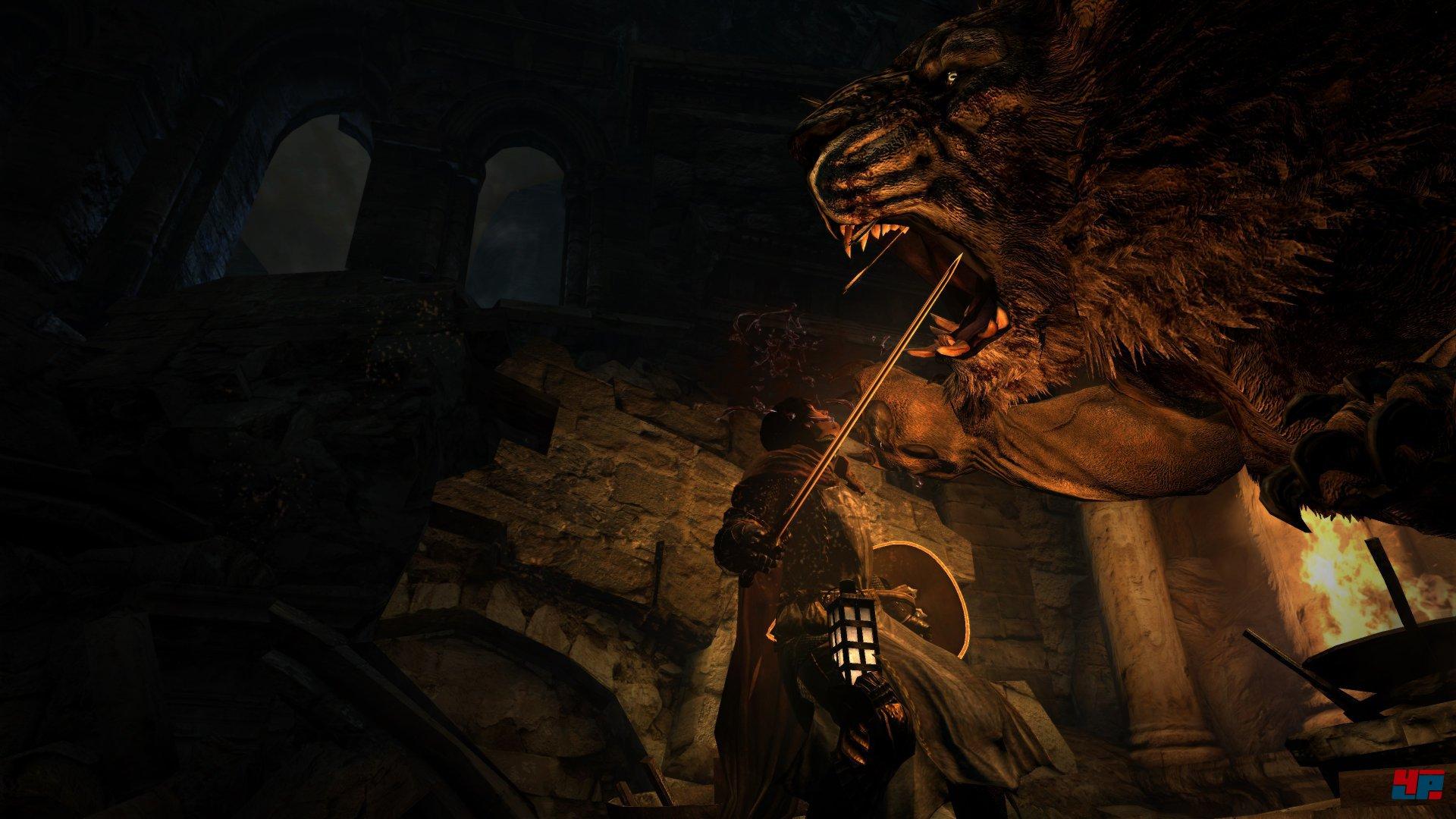 release info on half price outlet store sale Dragon's Dogma: Dark Arisen: PC: Unkomprimierte Original ...