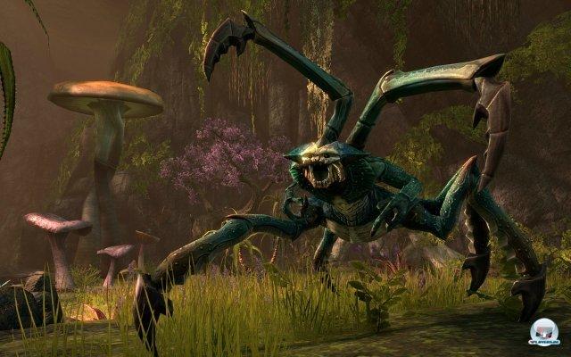 Screenshot - The Elder Scrolls Online (PC) 92415012