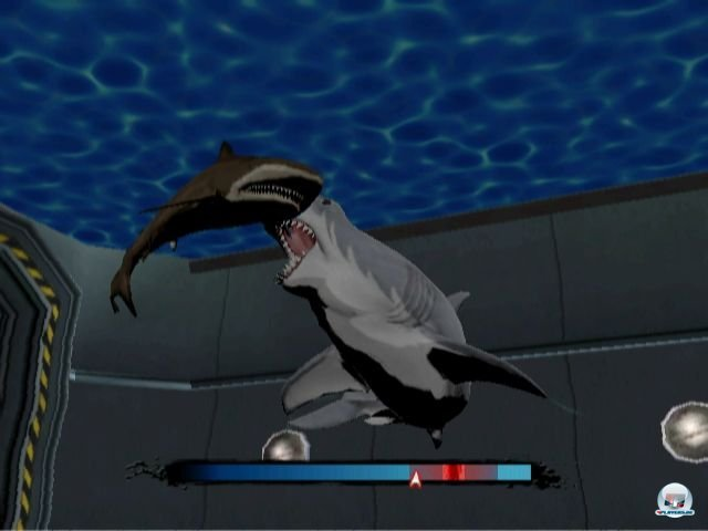 Screenshot - Jaws: Ultimate Predator (Wii) 2295067