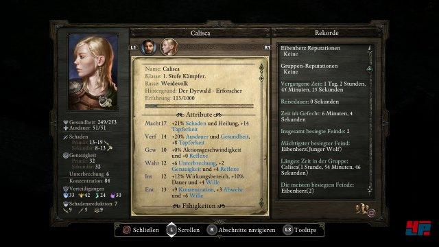 Screenshot - Pillars of Eternity (PS4)