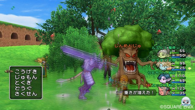 Screenshot - Dragon Quest X Online (Wii) 2368857