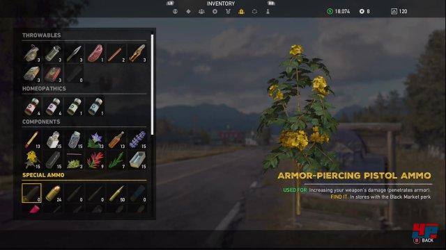 Screenshot - Far Cry 5 (XboxOneX) 92562411