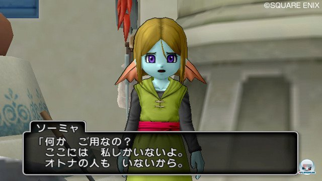 Screenshot - Dragon Quest X Online (Wii) 2365387
