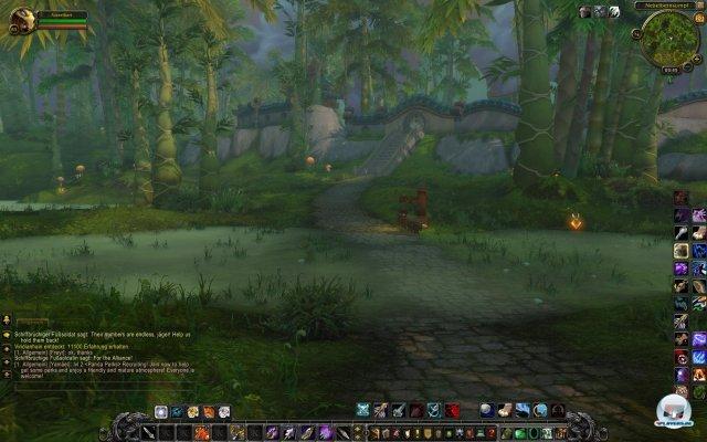 Screenshot - World of WarCraft: Mists of Pandaria (PC) 2334242