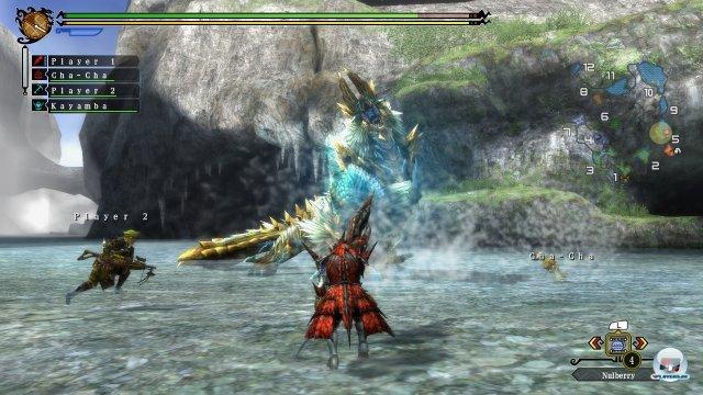 Screenshot - Monster Hunter 3 Ultimate (Wii_U) 92424642