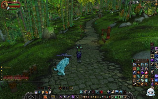Screenshot - World of WarCraft: Mists of Pandaria (PC) 2334117