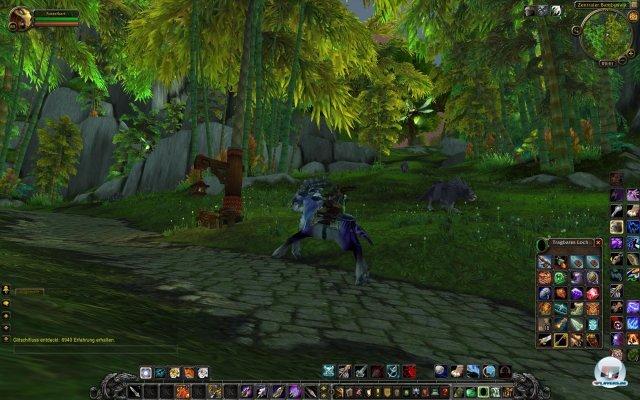 Screenshot - World of WarCraft: Mists of Pandaria (PC) 2334127