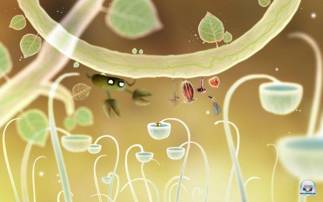 Screenshot - Botanicula (PC) 2343557