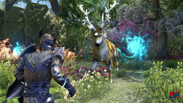 Screenshot - The Elder Scrolls Online: Summerset (PC)