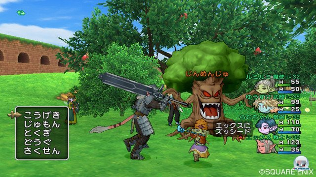 Screenshot - Dragon Quest X Online (Wii) 2368852