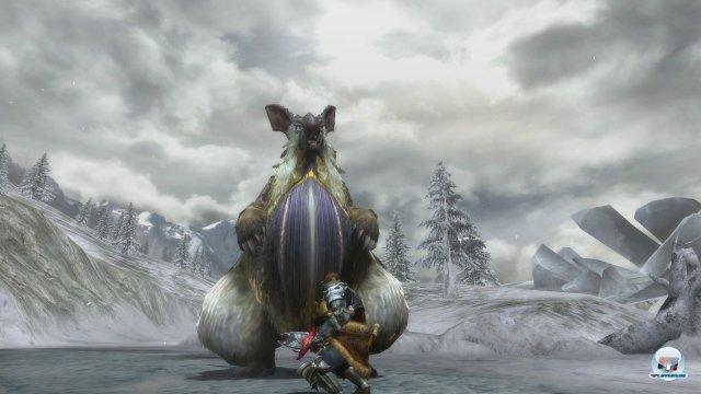Screenshot - Monster Hunter 3 Ultimate (Wii_U) 92433422