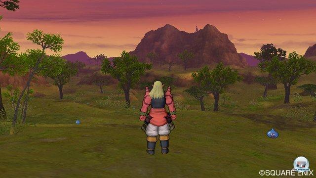 Screenshot - Dragon Quest X Online (Wii) 2273487