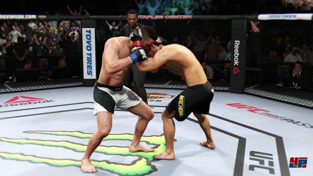Die Kampfdynamik wird in allen MMA-Aspekten (Stand-Up, Clinch, Bodenkampf) gut abgebildet