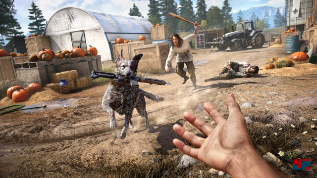 Screenshot - Far Cry 5 (PC) 92561005
