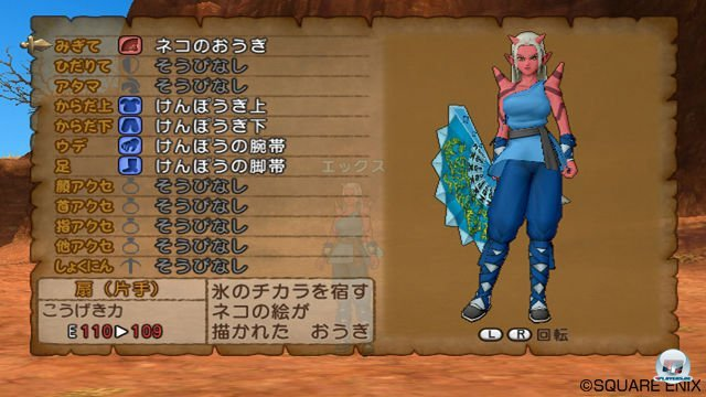 Screenshot - Dragon Quest X Online (Wii) 2292917