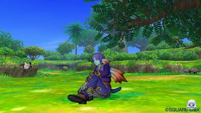 Screenshot - Dragon Quest X Online (Wii) 2289967