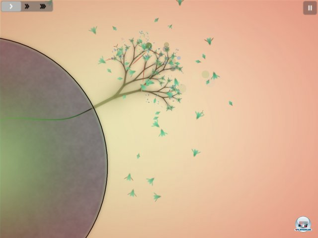 Eib Baum auf einem Kometen: Die Grundlage für die florale Expansion.