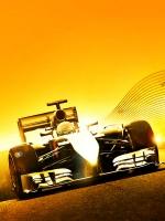 Alle Infos zu F1 2014 (360)