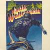 Castle Wolfenstein für Spielkultur