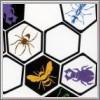 Hive für Spielkultur