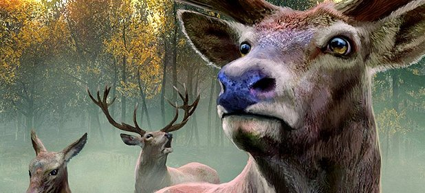 The Hunter 2013 - Deutsche Wälder  (Simulation) von Rondomedia