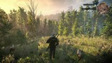 The Witcher 3: Wild Hunt: Downwarren-Trailer