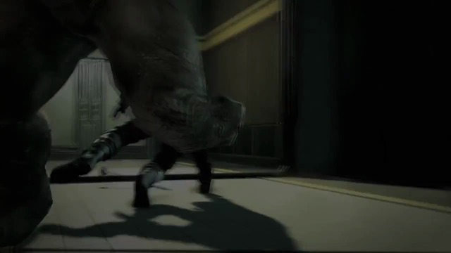 Rhino-Trailer